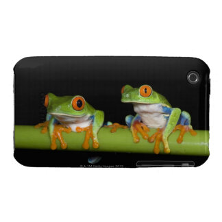 Red-eyed Tree Frogs (Agalychnis callidryas) on iPhone 3 Cover