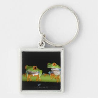 Red-eyed Tree Frogs (Agalychnis callidryas) Silver-Colored Square Keychain