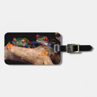 Red Eyed Tree Frogs Bag Tag