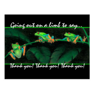 Red-Eyed Tree Frogs Thank you! Postcard