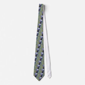 Red-faced Cormorant and Parakeet Auklet Tie