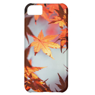Red Fall Autumn Leaves Maple Tree iPhone 5C Cover