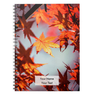 Red Fall Autumn Leaves Maple Tree Notebooks