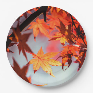 Red Fall Autumn Leaves Maple Tree Paper Plate