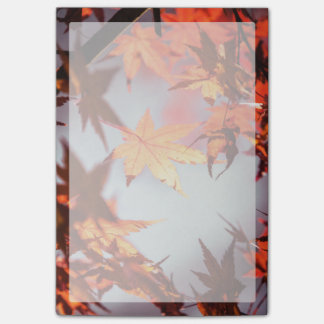 Red Fall Autumn Leaves Maple Tree Post-it® Notes