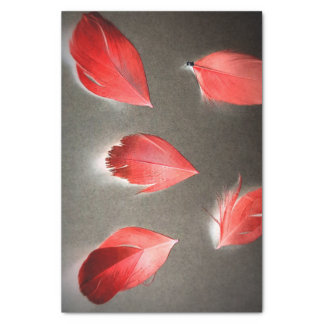 RED FEAHER TISSUE PAPER