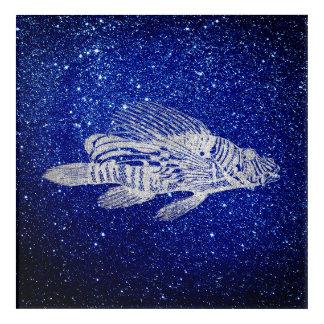 Red Fish Sea Life Blue Silver Gray Blue Navy Aqua Acrylic Print