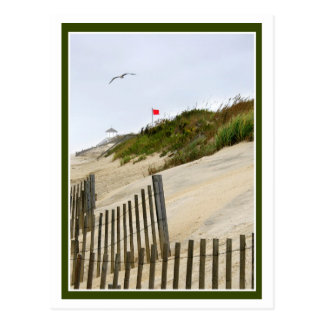 Red Flag On the Dunes Postcard