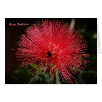 Red Flash Birthday Card