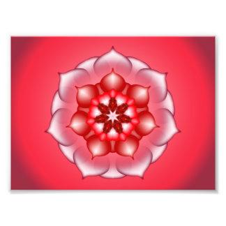 Red Floral Lotus Mandala Kaleidoscope Photo Art