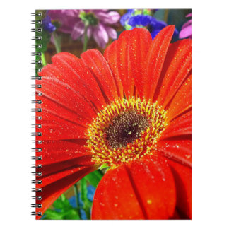 Red floral notebook