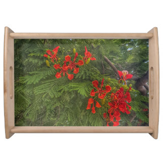 Red flower against green background print on tray