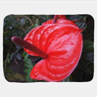 Red Flower Baby Blanket