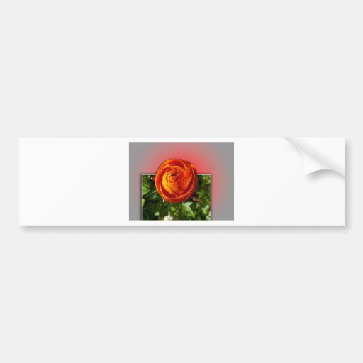 Red flower coming out of frame bumper stickers