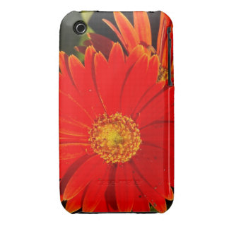 Red Flower iPhone 3 Covers