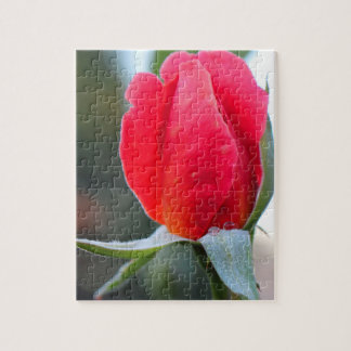 Red Flower Jigsaw Puzzle