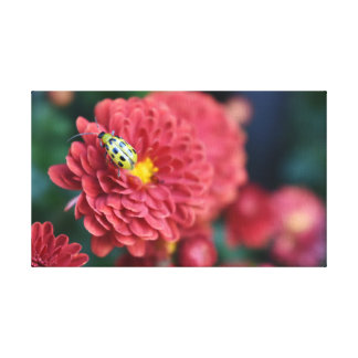 Red Flower Nature Photography Beetle Insect Bug Canvas Print