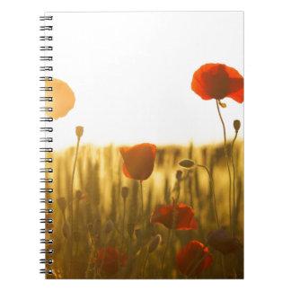 Red Flower Near White Flower during Daytime Notebooks