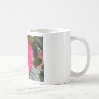Red flower of Camellia japonica Rachele Odero Coffee Mug