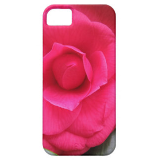 Red flower of Camellia japonica Rachele Odero iPhone 5 Cases