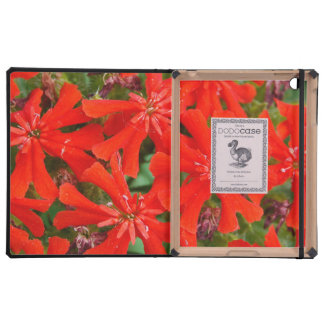 Red Flowers 4 mf iPad Case