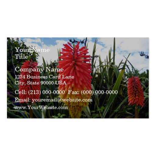 Red flowers against blue sky wit white clouds business card template