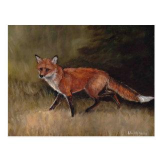 Red Fox Art  Postcard
