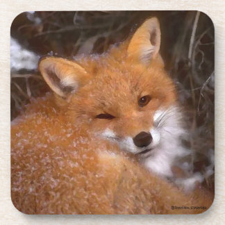 """Red Fox"" Coaster Set"