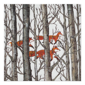 Red Fox Foxes in Gray Woods Art Poster