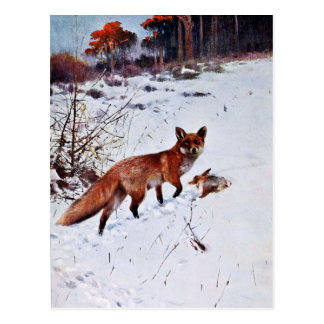 Red Fox Hunting Art Postcard