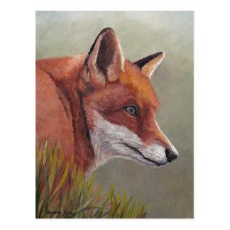 Red Fox in the Grass Animal Art Postcard