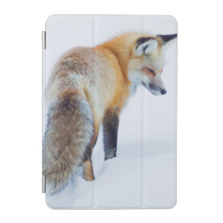 Red Fox in Winter iPad Mini Cover
