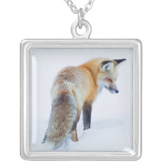Red Fox in Winter Silver Plated Necklace
