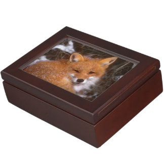 """Red Fox"" Keepsake Box"
