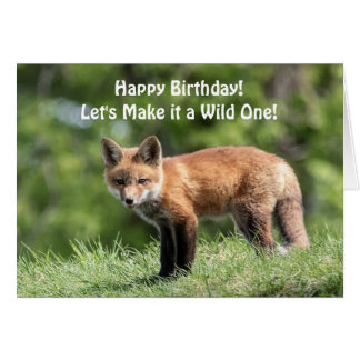 Red Fox Kit Card