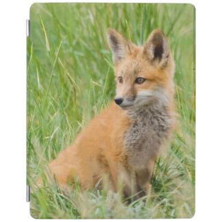 Red Fox Kit in grass near den iPad Cover