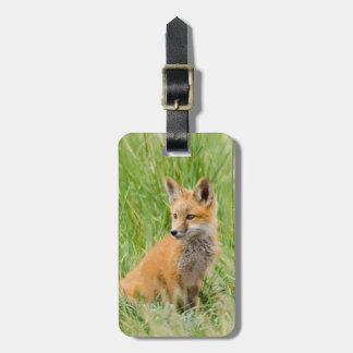Red Fox Kit in grass near den Luggage Tag