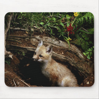 Red Fox Kit Mouse Pad