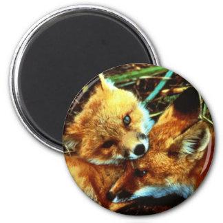 Red Fox Kits Magnet