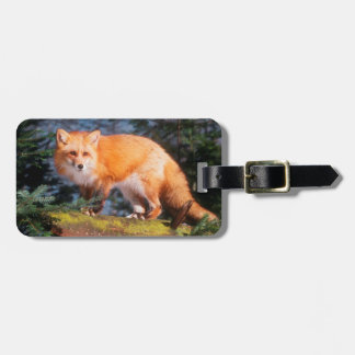 Red Fox on a log Bag Tag