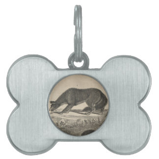 Red Fox Pet Tag