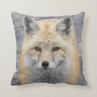 Red Fox Photo Square Throw Pillow