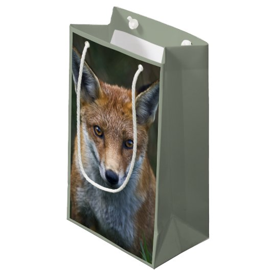Red Fox Portrait Gift Bag