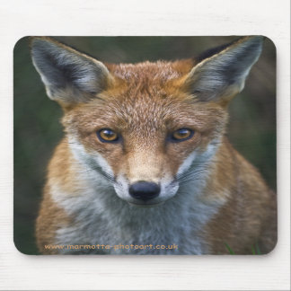 Red Fox Portrait Mousemat Mouse Pad