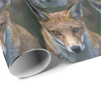 Red Fox Portrait Wrapping Paper