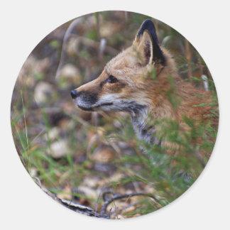 Red Fox - Profile of a Fox Round Sticker