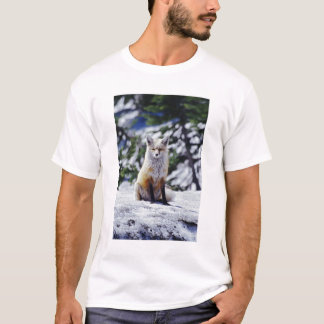 Red Fox sitting on snow bank, Vulpes, Mt. T-Shirt
