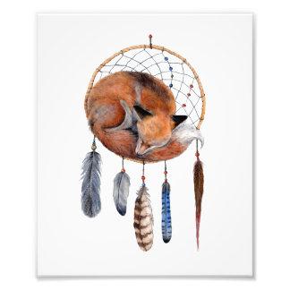 Red Fox Sleeping on Dreamcatcher Art Print