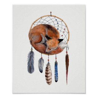 Red Fox Sleeping on Dreamcatcher Poster