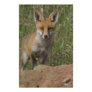 Red Fox Stationery